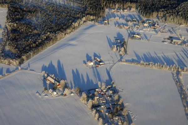 Verzauberte Bäume aus der Luft