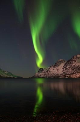 Spiegelungen im Ersfjord